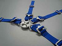 Name: Gurtzeug 1zu3 - 1zu3,5 blau Beispiel 2.jpg Views: 74 Size: 18.3 KB Description: