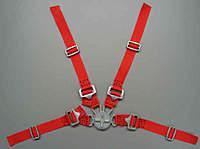 Name: Gurtzeug 1zu3 - 1zu3,5 rot Beispiel.jpg Views: 75 Size: 15.5 KB Description: