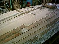 Name: W10 lots of new planks.jpg