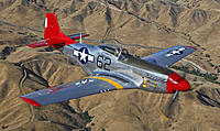 Name: Mustang-Bunny-oer-mtns.jpg