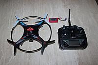 Name: butterfly 2016.JPG