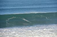 Name: Aves11202014_01.jpg