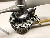 Name: DSCN4097.jpg