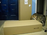 Name: DSCN1889.JPG