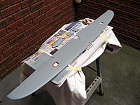 Name: Wing primed.jpg