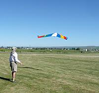Name: Tinamou.jpg