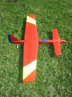 Name: IMG_8555_resize.jpg Views: 124 Size: 195.2 KB Description: Fluoro yellow stripes on the wing are highly visible.
