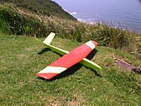Name: PIC_0016.jpg Views: 175 Size: 141.1 KB Description: V-tail model using the same wing.
