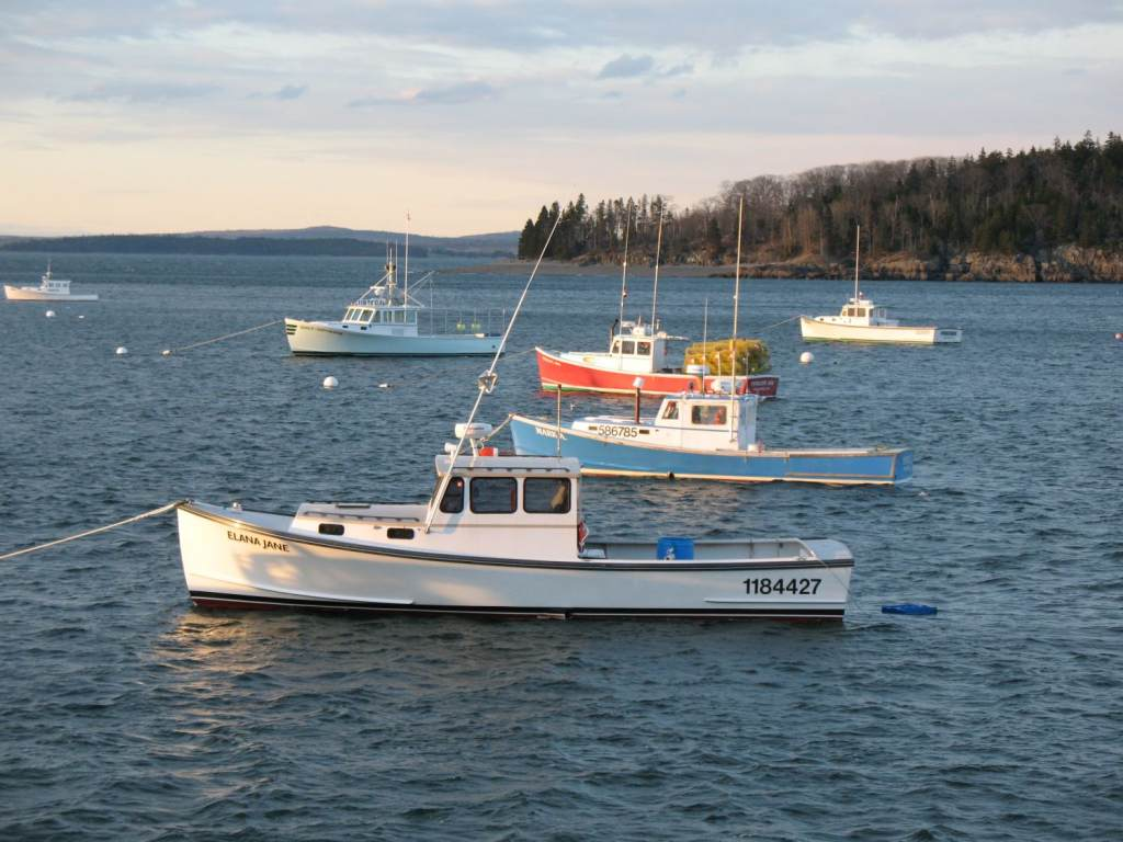 Attachment browser bar harbor fishing boats jpg by for Rc boat fishing