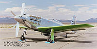 Name: P-51D-Precious-Metal-02.jpg