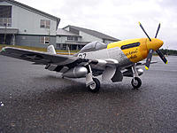 Name: DSCN5459.jpg
