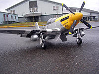 Name: DSCN5460.jpg
