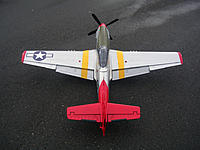 Name: DSCN5478.jpg