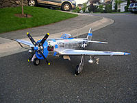 Name: DSCN5572.jpg