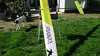 Name: Corvus back yard 001.JPG
