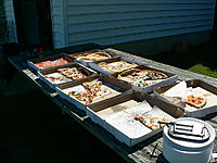 Name: Fall Fling 2012 022.jpg