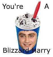 Name: Blizzard.JPG Views: 198 Size: 21.7 KB Description: