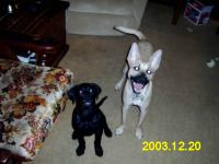 Name: Our Digital Camera 008.jpg