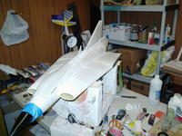 Name: BUSH0007.jpg
