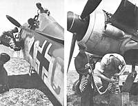 Name: FW190G-8 tropical filter.jpg
