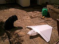 Name: CIMG4990.jpg Views: 110 Size: 185.4 KB Description: Dog's not impressed