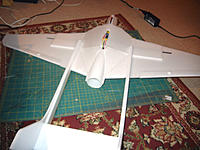 Name: DSCN2411.jpg