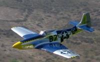 "Name: DAM51.jpg Views: 210 Size: 42.4 KB Description: 65"" Durable Aircraft Models P-51"