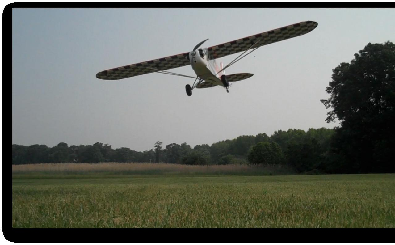Name: Cub flytoward.jpg Views: 178 Size: 74.0 KB Description: Close overfly of Flip camera on the ground.  Grass in the wires.