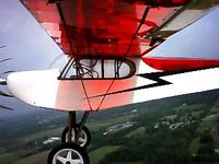 Name: bp cub gear wing2.jpg
