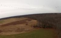 Name: Screen Shot 2013-01-21 at 4.03.39 PM.jpg Views: 111 Size: 77.2 KB Description: Tactical Canadian Goose flock intercept practice.  ;-)  (Not the migrating kind...)